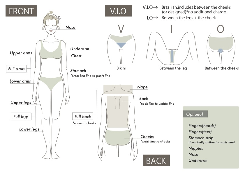 Body parts and vio illust